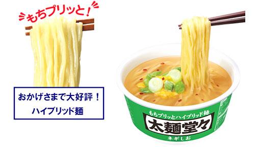 「日清太麺堂々 ネギしおシズル」